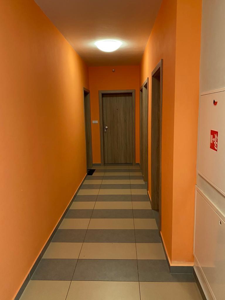 Byt 1+kk 30,99 m2, České Budějovice